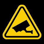 CCTV Recording in Progressat Halifax Spooktacular